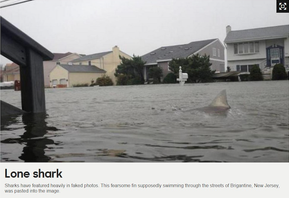 Figure 2: Photoshopped shark in a viral image during hurricane Sandy 2012. Source: BBCNews