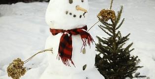 snowman CC0 by bairli1